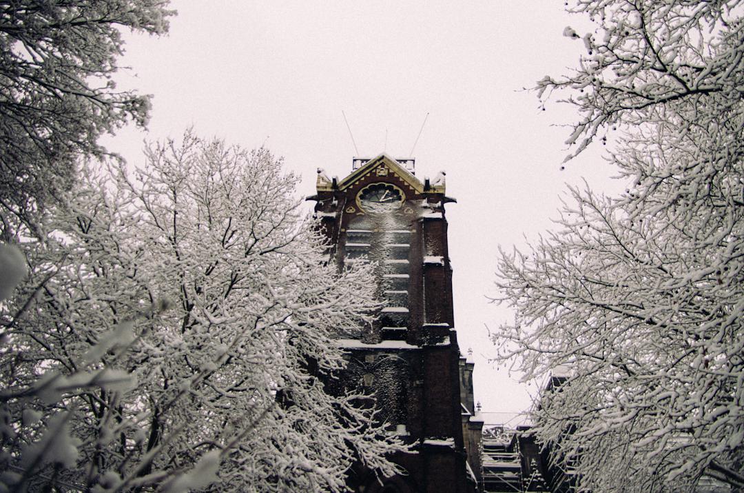 campanile cathédrale notre dame de la treille lille-8