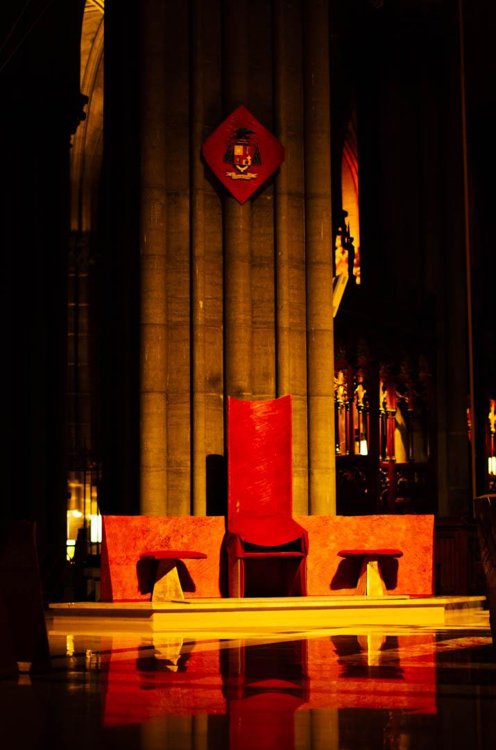 cathèdre cathédrale notre dame de la treille lille-6188