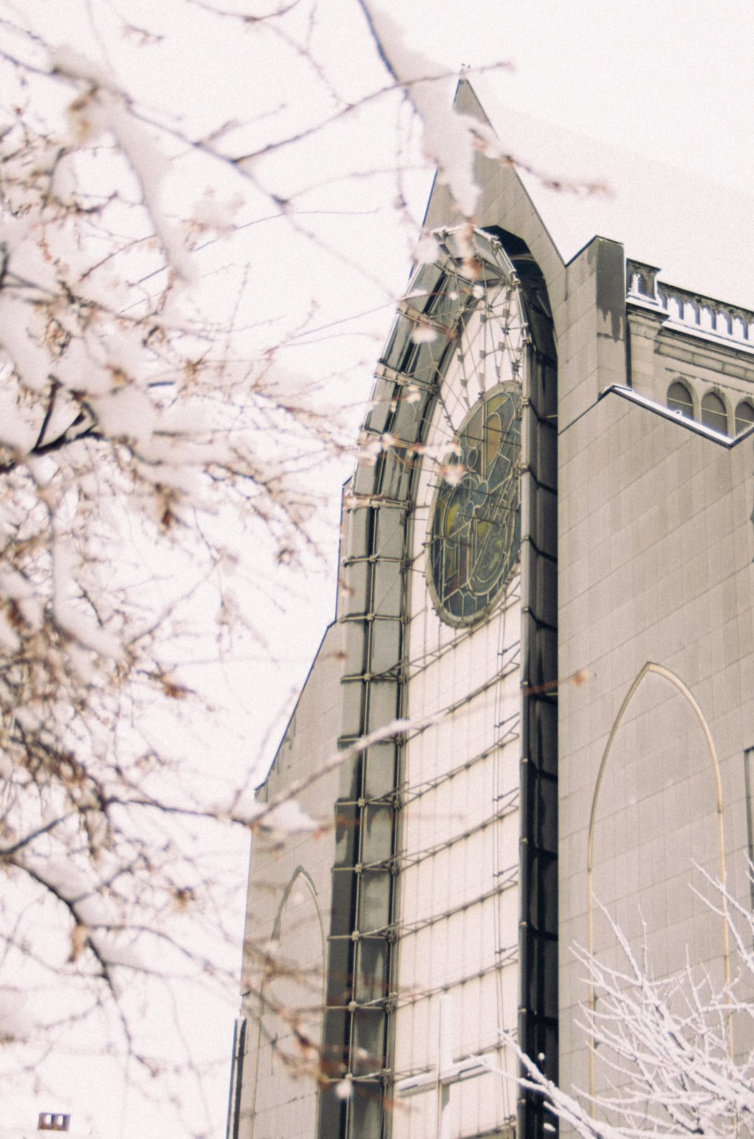 façade cathédrale notre dame de la treille lille-4 (2)