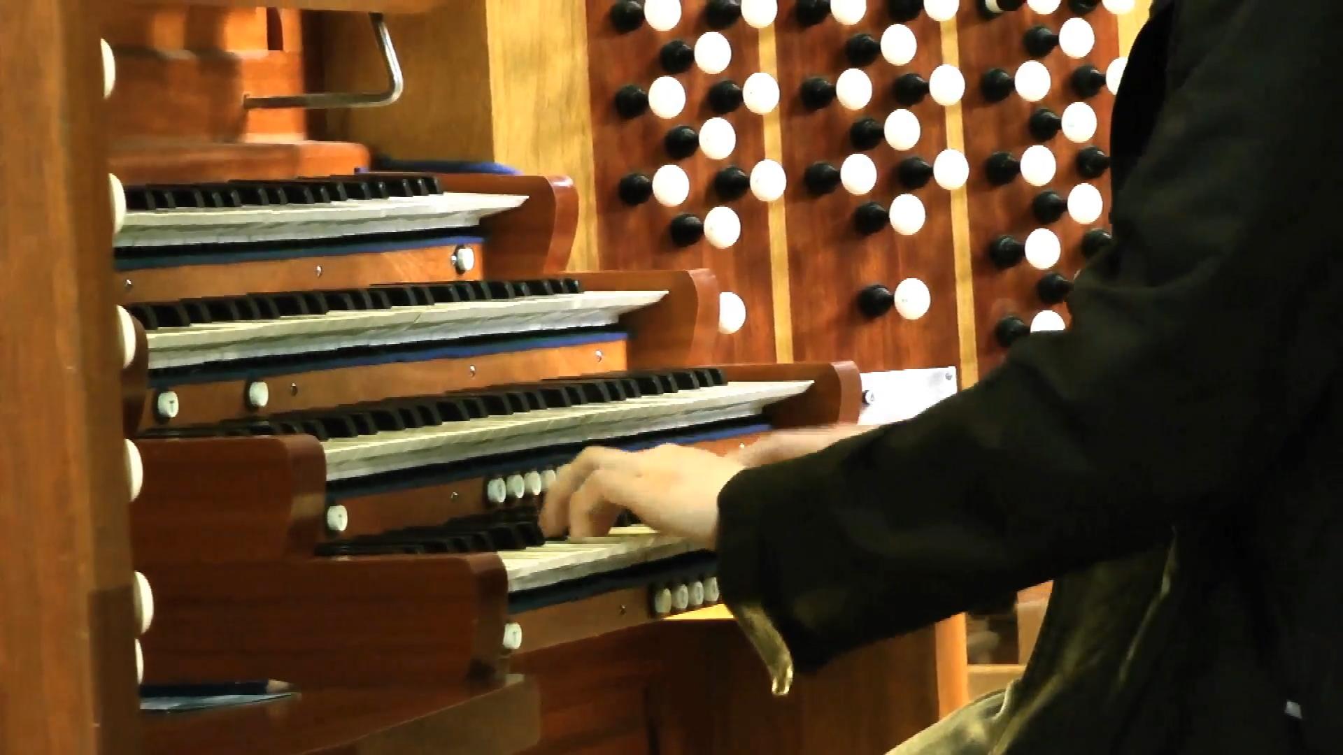 grandes orgues Danion – Gonzalez cathedrale notre dame de la treille