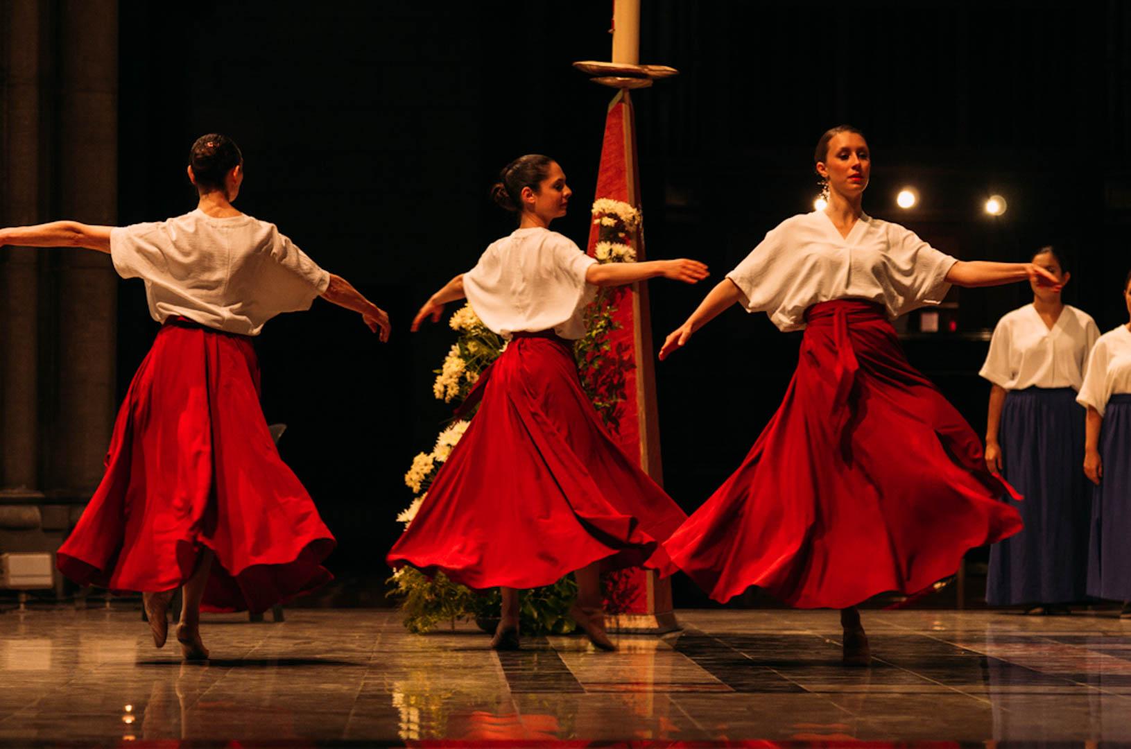 spectacle danse insolita cathédrale notre dame de la treille-16