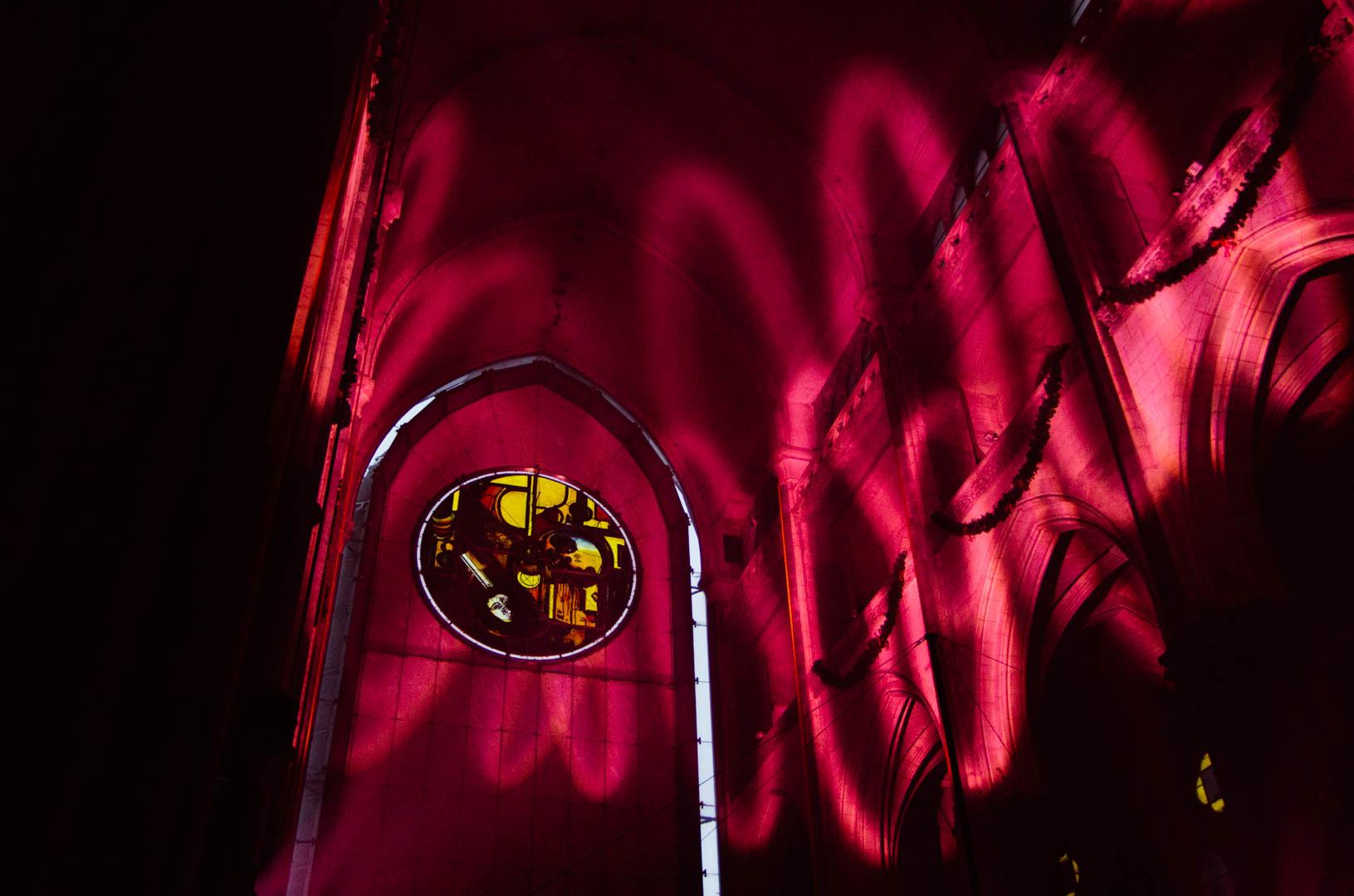 rosace cathédrale notre dame de la treille 65