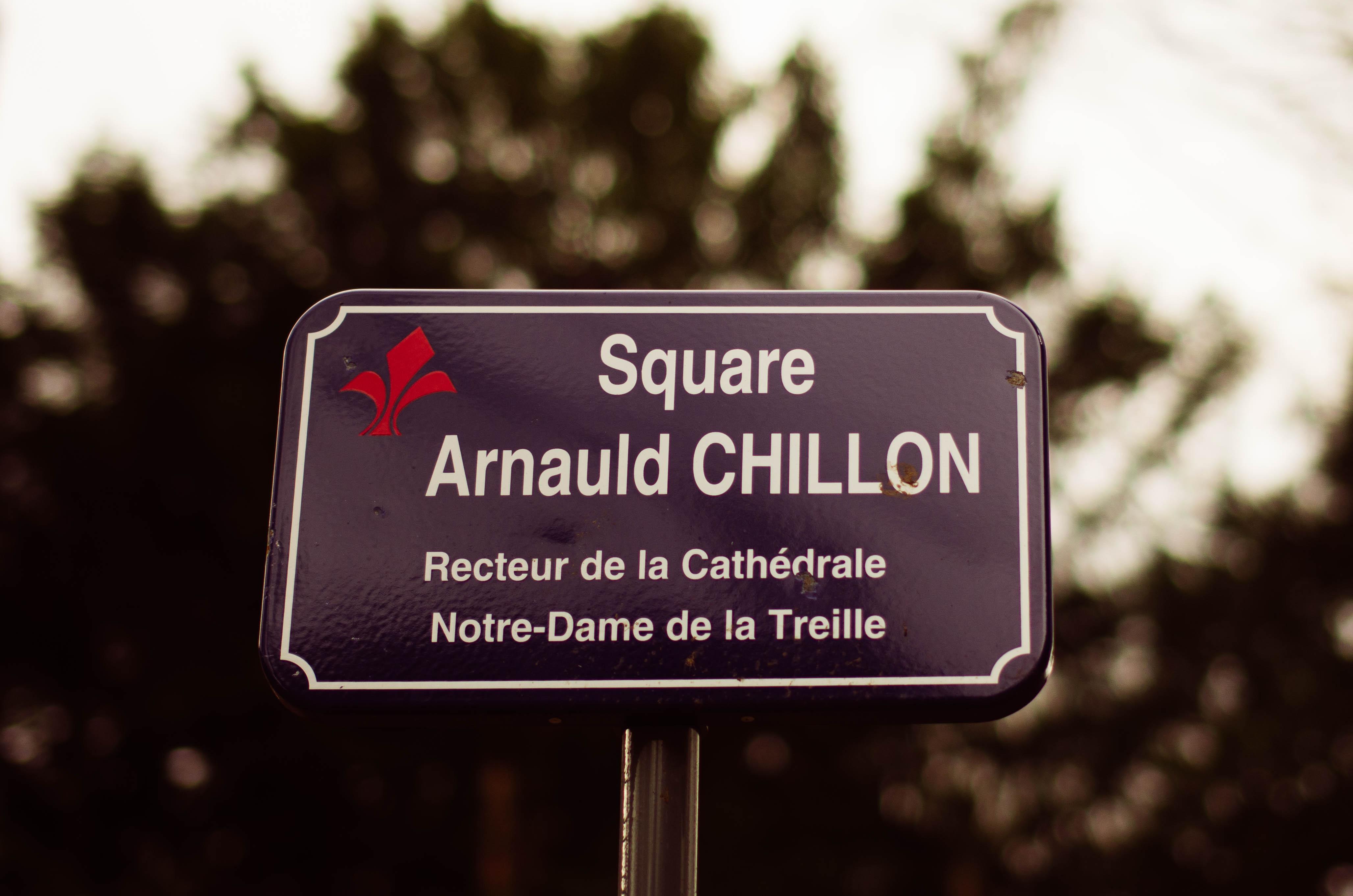 plaque square arnauld chillon cathédrale notre dame de la treille